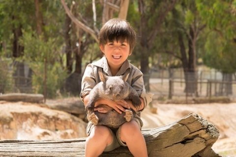 Ballarat Wildlife Park Admission: Child ($16.65), Adult ($29.70) or Family of Up to Six...
