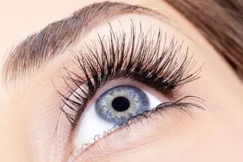 Eyebrow or Eyelash Makeover Package with Optional Tint at Uneek Nails and Waxing (Up to...